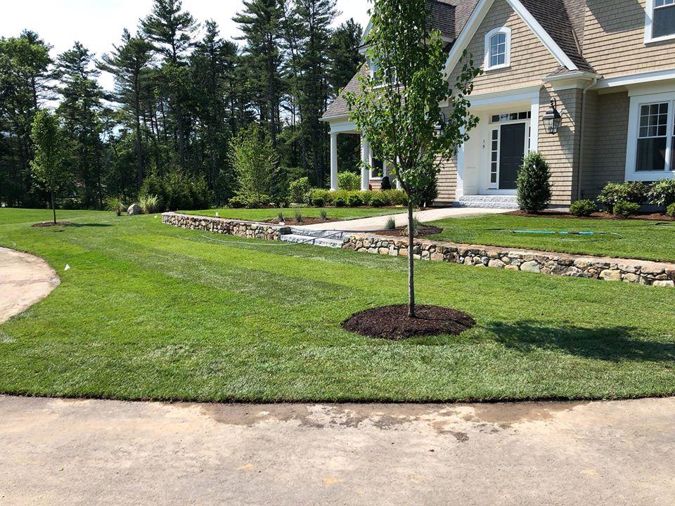 Planting Design - Guerrini Landscape Design